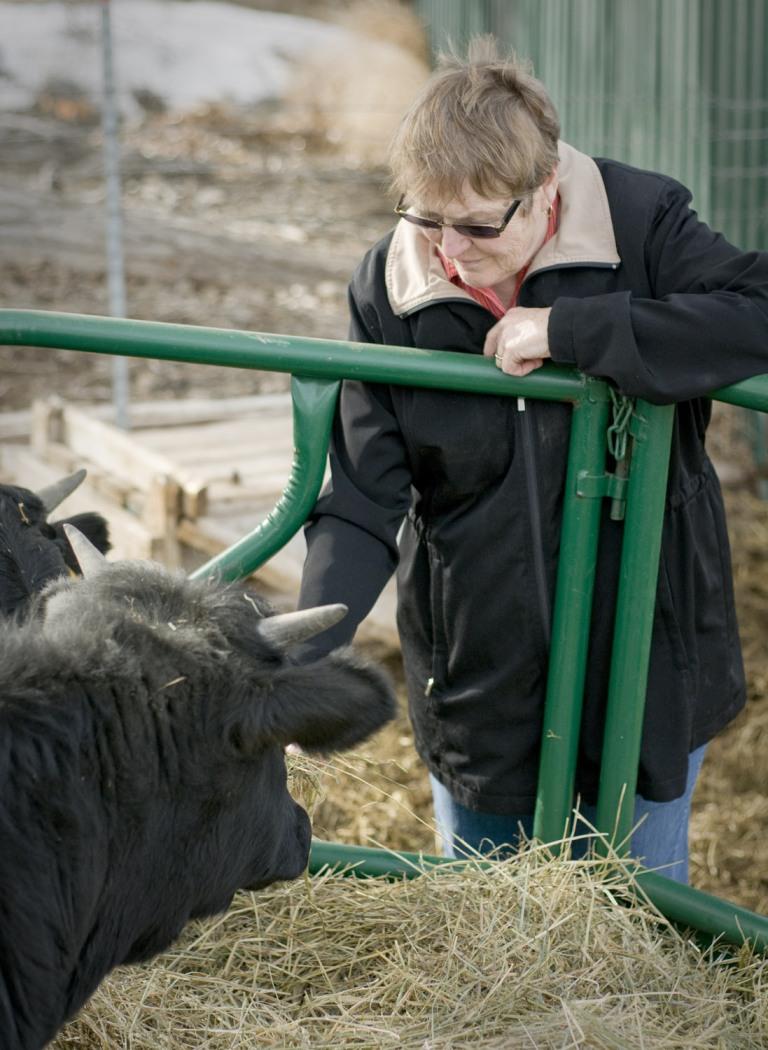 carol-nash-with-cows